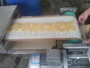 微波五谷雜糧烘烤設備