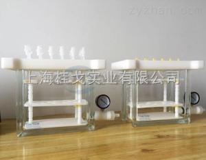GGQSE-12貴陽固相萃取儀生產廠家