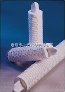 ZCMS1-020C-P多明尼克液體除菌濾芯