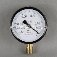 Y-60/100/150一般压力表系列