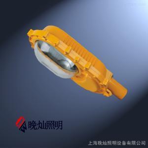 LBFC8186A型LED防爆防爆路灯