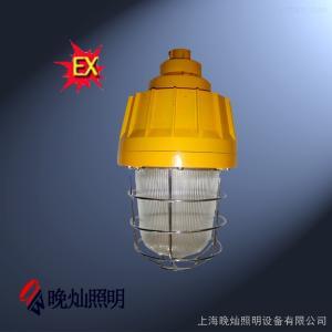 LBNW6230LBNW6230防爆泛光灯