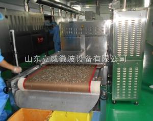 油茶籽烘干设备大全/油茶籽专用微波烘干设备