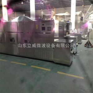 LW-20GM-6X鹅卵石微波升温设备实用吗
