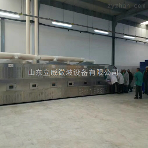 LW-30GM-6X濟南隧道式微波干燥設備生產廠家|微波烘干機制造商|立威微波設備有限公司