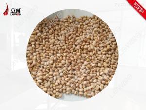 20HMV濟南黃豆烘焙機廠家立威微波