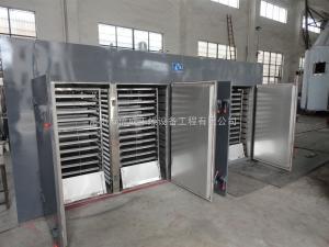 CT-C系列桂圓烘干機 菠蘿蜜果蔬烘箱 熱風循環烘箱