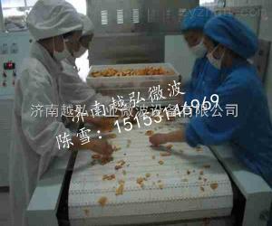 YH-50KW微波果脯蜜饯烘干杀菌设备厂家