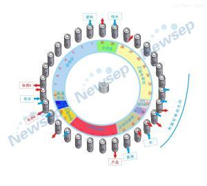 Newsep-100氨基酸分離純化/欣賽科技連續色譜分離應用工藝