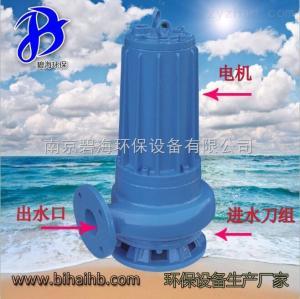 AF0.75KW碧海廠家直銷AF0.75KW雙絞刀泵 高效率泵