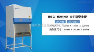 BSC-1100IIA2-X鑫贝西生物安全柜
