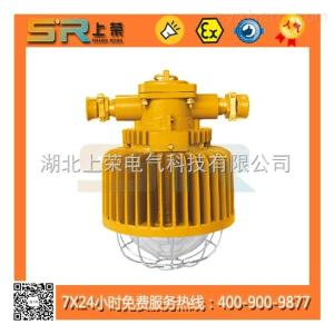 DGS48/50/127L(A)DGS48/50/127L(A)矿用隔爆型LED巷道灯