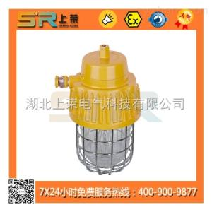 SR303SR303防爆平台灯