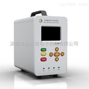 GT-2000氢气气体分析仪