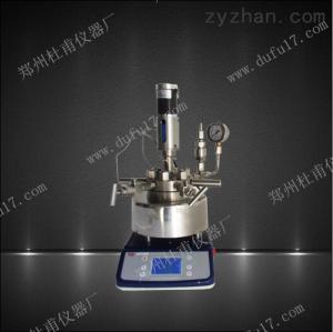 TGYF-C-50ml小型多功能 高压反应釜可电动搅拌磁力搅拌