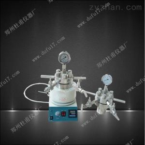 TGYF-C-50ml小型多功能高压反应釜可电动搅拌磁力搅拌.