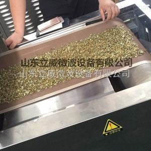 LW-20GM-6X豆类等五谷杂粮微波预熟设备