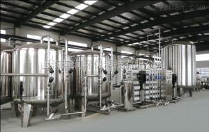 BR-1000武汉制药纯化水设备