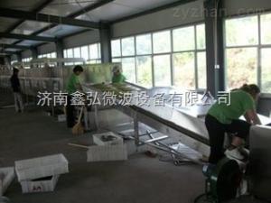 XH-20KW金银花微波杀青设备