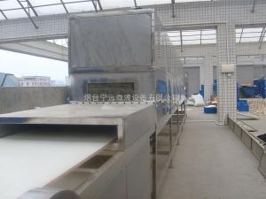 山东微波干燥设备