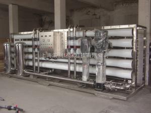 BR-0.25TGMP制藥純化水設備