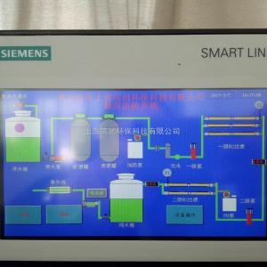 BR-0.25T醫療制藥純化水設備廠家