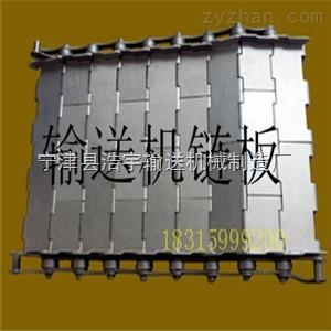 LN-01平板輸送機 吉林制藥鏈板式輸送機規格/定制 鏈板定制