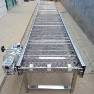 LN-B1機械輸送設備 金屬網帶傳送機 珠海網帶輸送機 鏈條式網帶