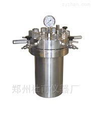 50ML供應高壓不銹鋼反應釜  廠家