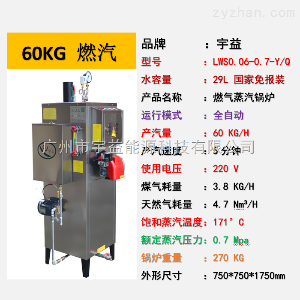LWS-0.06-0.7-Q宇益燃氣蒸汽發生器60KG/H蒸發量燃天然氣工業鍋爐