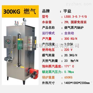 LSS-0.3-0.7-Q燃气锅炉蒸汽发生器300KG/H工业小型锅炉