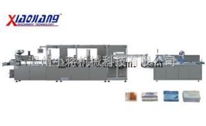 DPP260SL-ZH120型鋁塑包裝聯動生產線