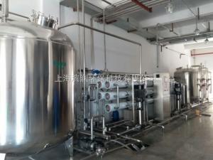 BR-0.5T醫療制藥行業用蒸餾水設備