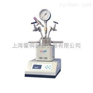 HT-系列福建2L高压结晶反应釜价格厂家电话