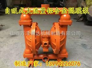 內蒙古呼倫貝爾英格索蘭防腐蝕氣動隔膜泵BQG140/0.3多功能隔膜泵