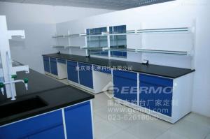 CQ-ZYT-GEM优质中央实验台招商加盟,厂家批发加盟