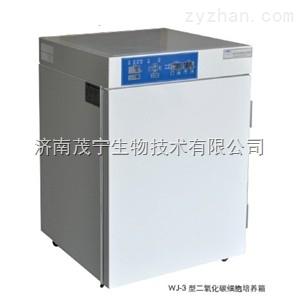WJ-3-80二氧化碳培养箱/恒字WJ-3二氧化碳培养箱