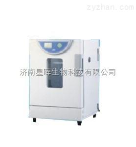 BPH-9042一恒精密恒溫培養箱BPH-9042/精密恒溫箱品牌