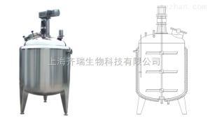 CYB系列顶式机械搅拌罐厂家