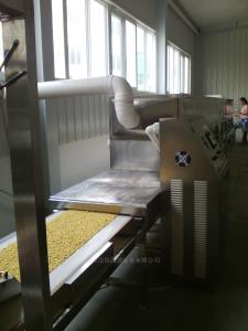 HMWB-36SD鸡精微波干燥灭菌线 鸡精烘干机