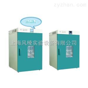 DHG-9030A精密鼓风干燥箱
