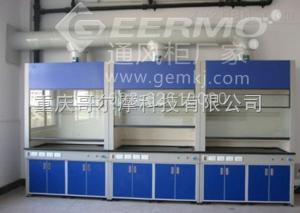 CQ-GEM-TFG重庆哥尔摩科技有限公司-重庆通风柜材质/参数/厂家