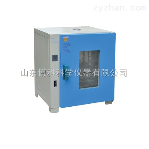 PYX-DHS.600-BS-II恒字隔水式恒溫培養箱