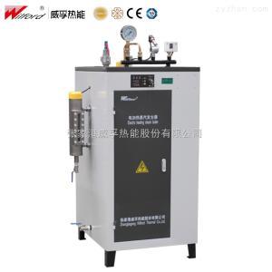 LDR灭菌消毒 电加热蒸汽锅炉
