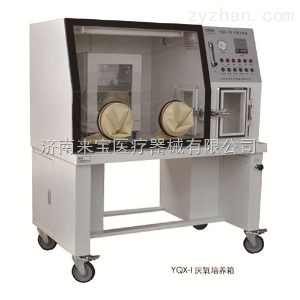 YQX-I上海跃进 恒字液晶屏显示厌氧培养箱