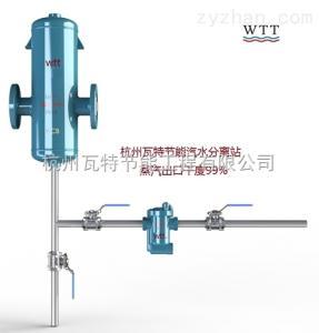 DF200瓦特DF200高效蒸汽汽水分离器