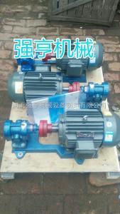 2CY河北強亨2CY不銹鋼齒輪油泵維修方便效率高