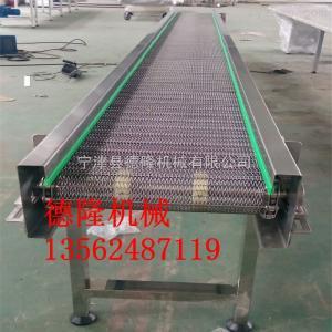 dl-30水果蔬菜清洗網帶輸送機不銹鋼網鏈流水線