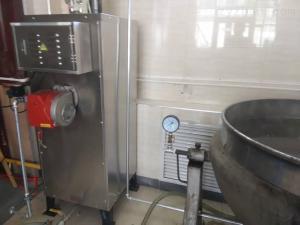 LSS0.07-0.7-Y/Q旭恩加熱70KG燃液化氣蒸汽發生器批發