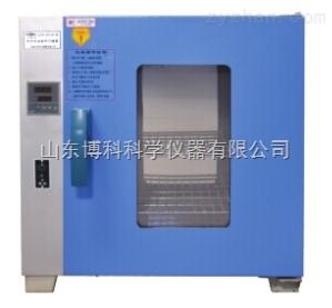 GZX-GF101-1-BS-I恒字恒温鼓风干燥箱